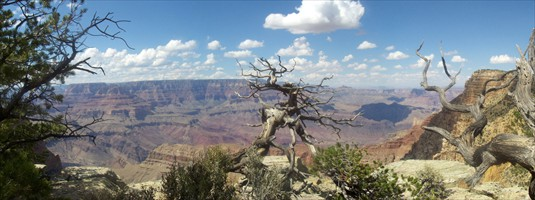 Grand-Canyon-Panorama